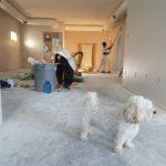 Naprawa a remont. Czy szpachlowanie i regipsy mogą odmienić mieszkanie?