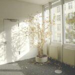 Jak odnowić przedpokój w starym domu? Kilka przydatnych rozwiązań
